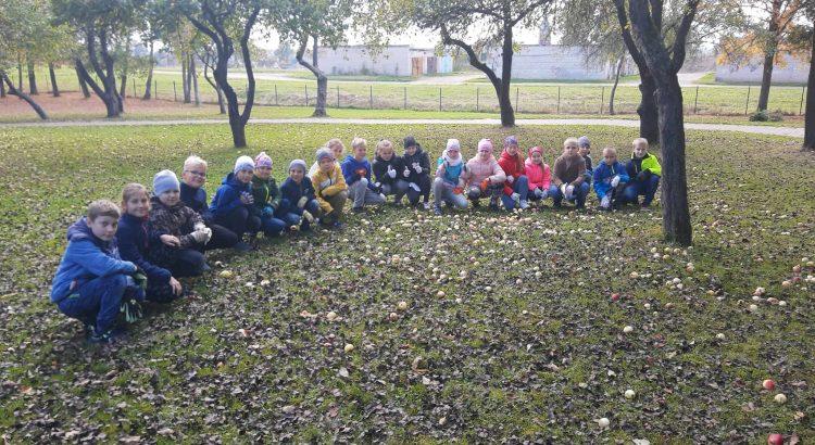Mazie uzkopj skolas teritoriju kopbilde