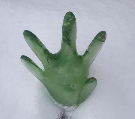 Ledus roka